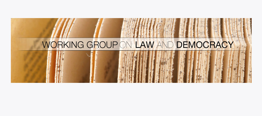 Working Group on Law and Democracy